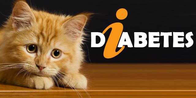 CVE_info-Diabetes-cats