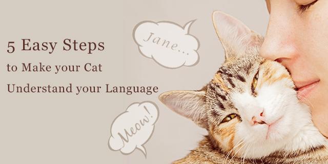 CVE_cat-language