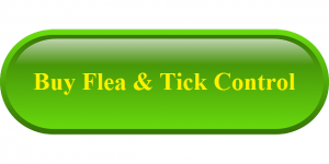 Buy Flea & Tick Control for Dogs