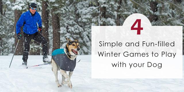 cve-fun-filled-winter-games