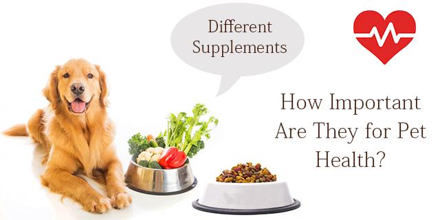 cve-supplements