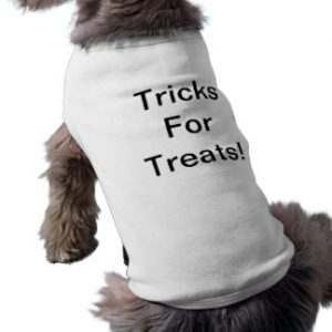 tricks_for_treats_sleeveless_dog_shirt-r4f554f060a044a46ae84e7c471d647df_v9i79_8byvr_324