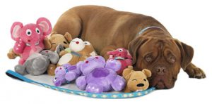 Dog Toys For Indoor Playing
