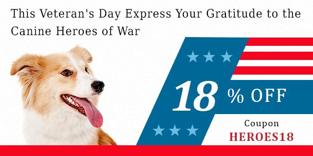 veterans day pets tips