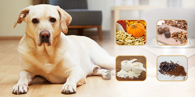 home remedies for deworming pets
