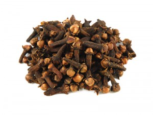 Cloves for dogs and cats