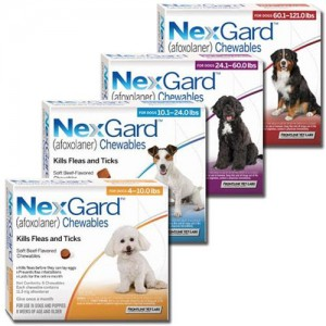 Discount on nexgard for dogs