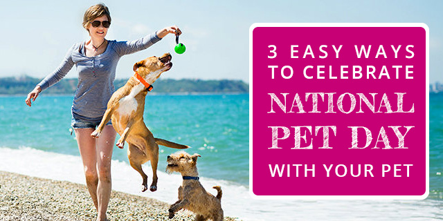 National-Pet-Day