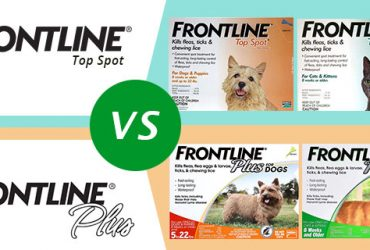 CVE-Frontline-Top-Spot-Vs-Frontline-Plus