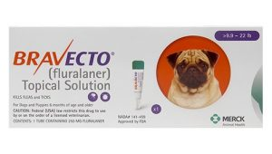 Bravecto-Topical-Solution-for-Dogs