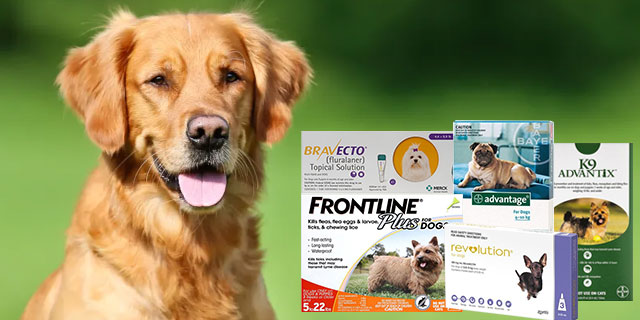 best-spot-on-treatment-for-fleas-and-ticks