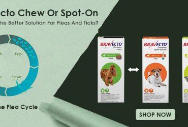 Bravecto-Chew-Vs-Spot-On