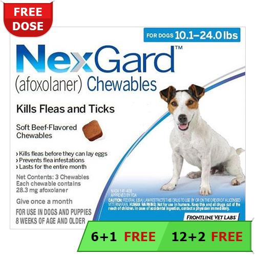 Nexgard For Dogs Buy Nexgard Flea Tick Chewable For Dogs