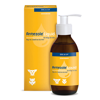 Antezole Liquid Oral for Dogs and Cats