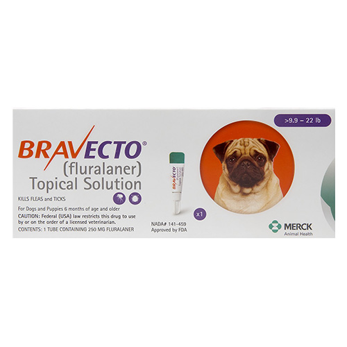 Bravecto Topical for Small Dogs (9.9 - 22 lbs) Orange