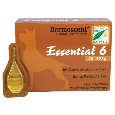Essential-6-for-dogs