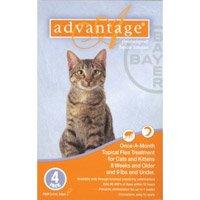 Advocate Cat Flea Treatment Side Effects