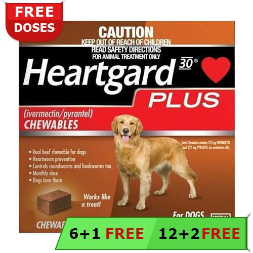 Heartgard Plus For Dogs Buy Heartgard Plus Heartworm