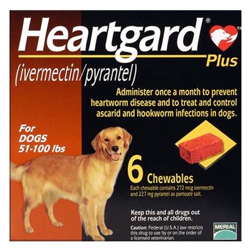 Small Dog Supplies Canada