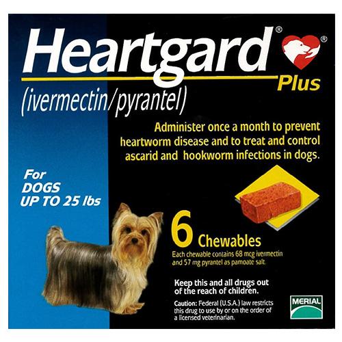 Heartgard-plus-effective-treatment-for-heartworms