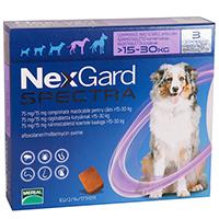 Nexgard-spectra-free-shipping