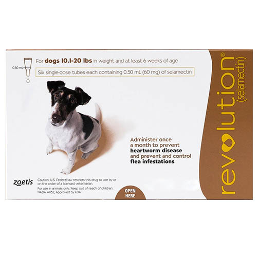 Revolution For Dogs Buy Revolution Online Heartworm And