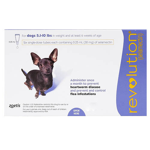 Revolution-heartworm-treatment-for-dogs